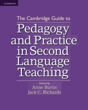 pedagogy and practice in second language teaching